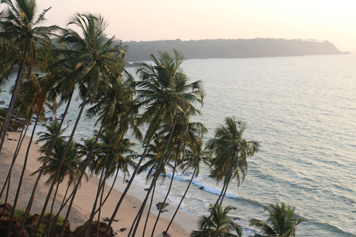 """India: Goa """"When heaven turns into hell"""""""