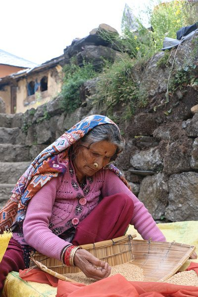 a lady threshing rice in Dharamkot, a mountain village above McLeodganj